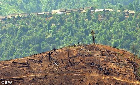 Utilize taxes to limit habitat destruction and pollution